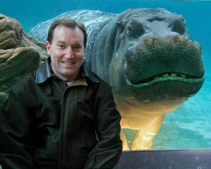 Hippo photobomb 0 45990 0 hippo photobomb