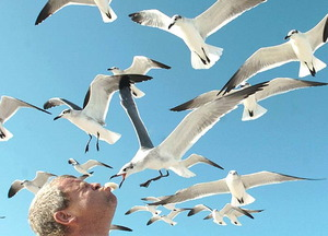Feeding the seaguls